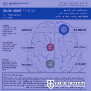 Brain Brief Profile