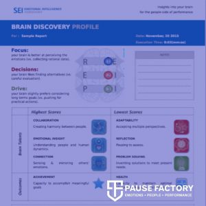 Brain Discovery Profile