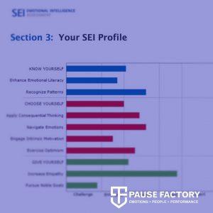 SEI Profile